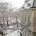經濟學部會議廳外的窗子望出去