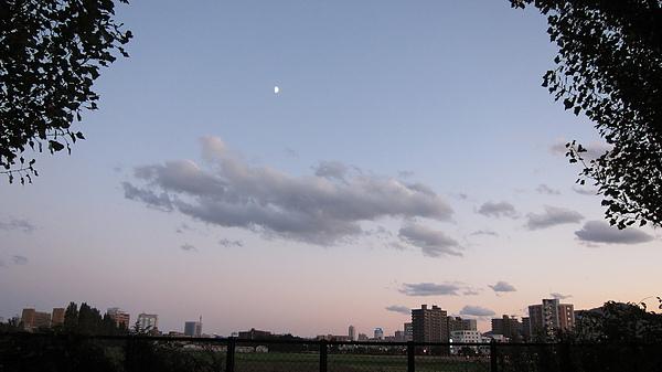 傍晚的學校農場