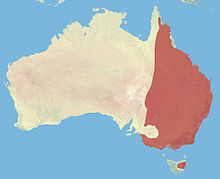 220px-Eastern_Grey_Kangaroo_Range.jpg