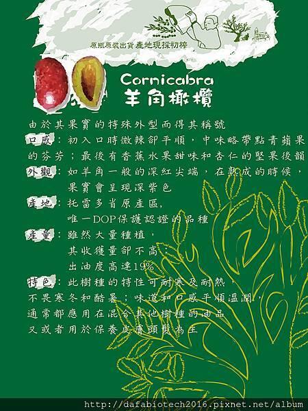 羊角橄欖介紹網頁.jpg