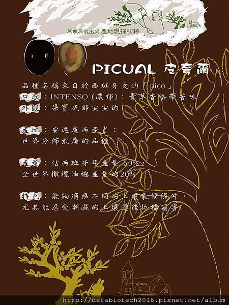 皮夸爾介紹網頁.jpg
