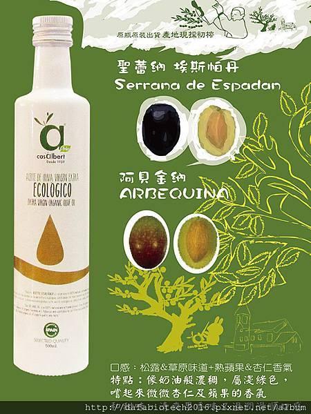 白瓶橄欖介紹 1024X768.jpg