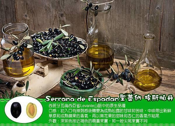 聖蕾納樹種圖特點900.jpg