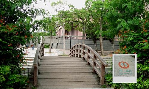 夏雨──高雄市立美術館(二)5