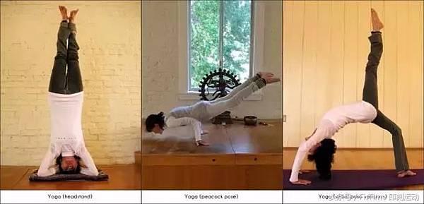0304正能量-做瑜珈.jpg