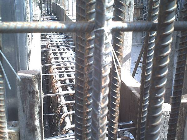 宜蘭 羅東運動公園旁的大粒丸民宿~ 自己蓋的房子 鋼筋水泥的強度都特別加強