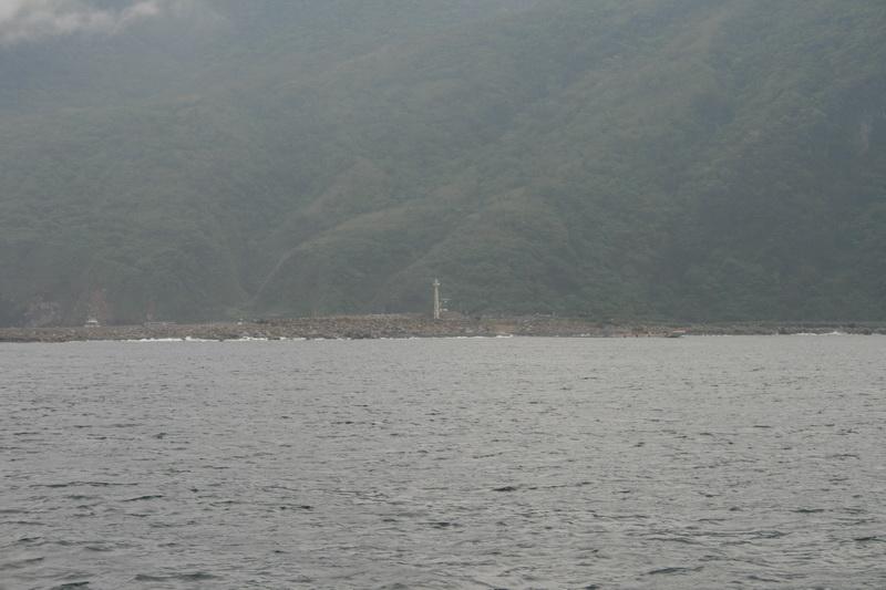賞鯨Ⅱ_28.JPG
