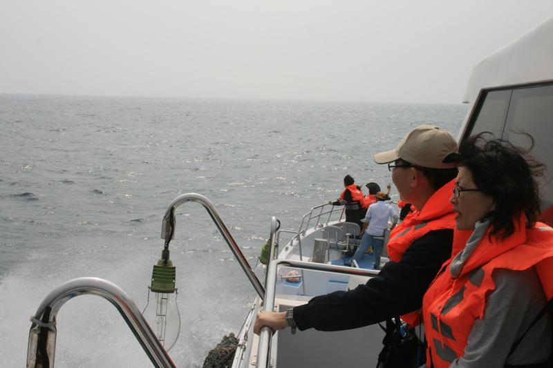 賞鯨Ⅱ_55.JPG