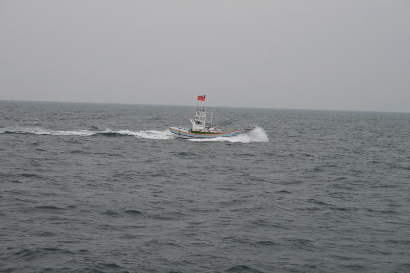 賞鯨Ⅱ_57.JPG
