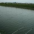 林先生-釣魚03.JPG