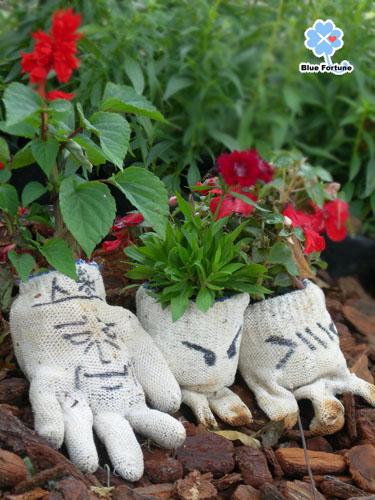 手套寶寶之奇妙組合