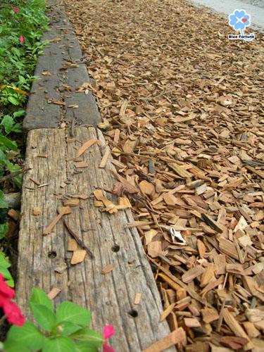 木屑鋪成的步道