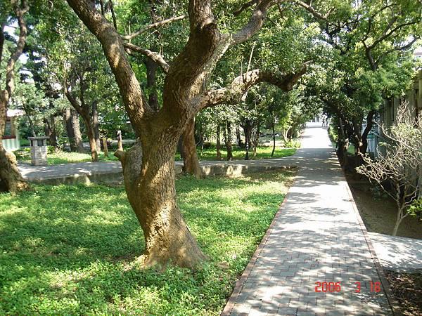 950318_國管院院慶巡禮_28-營站大樓後方步道