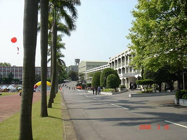 950318_國管院院慶巡禮_48-行政大樓前之椰林道