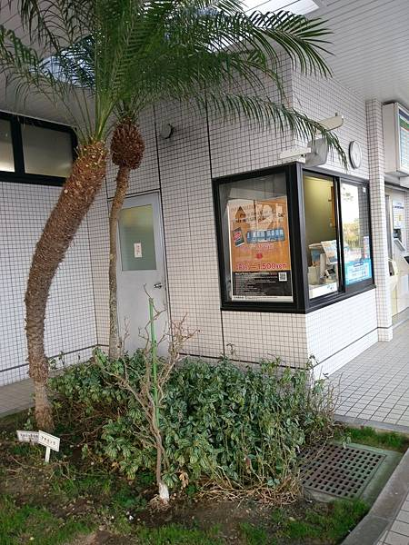 20180404宮崎_180430_0274.jpg