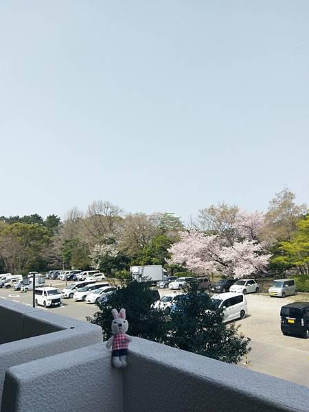 20190407名古屋第四天1_190410_0809.jpg