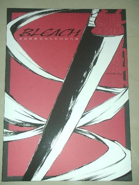 Bleach2008_001.JPG