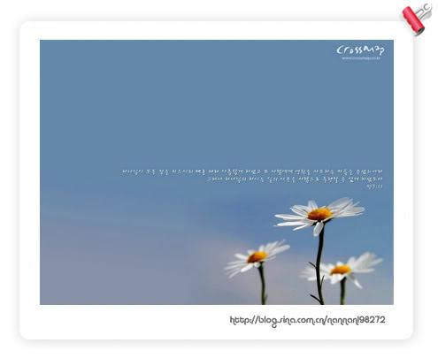 207441_495x405.jpg