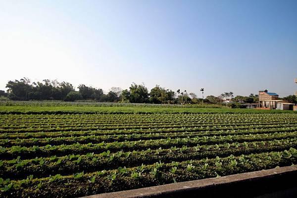 農業體驗.jpg