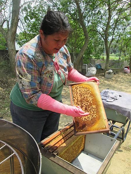 集蜜-檢視蜂巢2