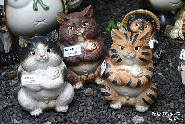 超可愛的胖貓.jpg