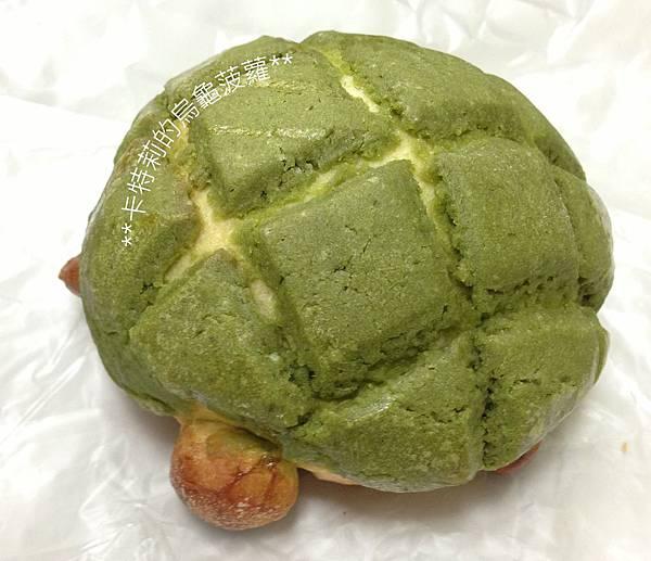 烏龜菠蘿.jpg