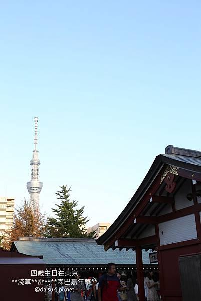 DAY2 寺廟與天空樹