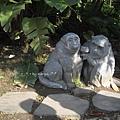 [4Y4M27D] 動物園‧MONKEYS.jpg