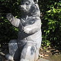[4Y4M27D] 動物園‧台灣黑熊.jpg