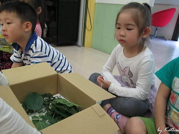 自然田園教學140415_昆蟲的寶寶.JPG