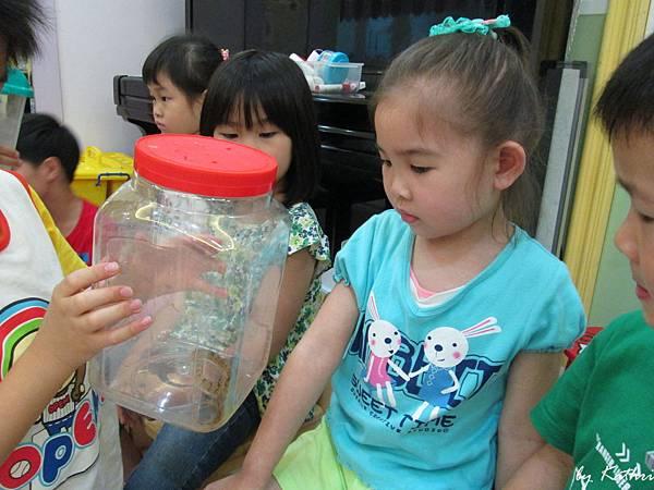 自然田園教學140422_兩棲類動物 (回來一直講樹蛙的事).JPG