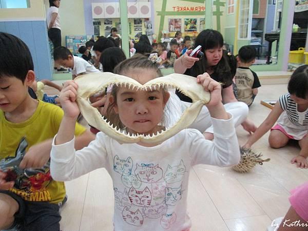 自然田園教學140513_奇特的魚-認識軟骨魚類的鯊魚、魟魚等.JPG