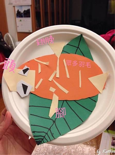 140219[4Y4M23D] 吃葉子的小雞(解說圖)