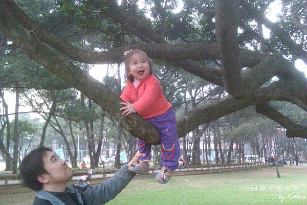 爬樹很開心.jpg