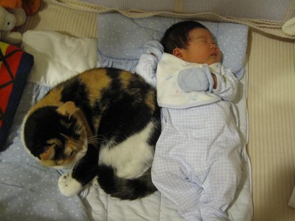 [1M0D]葦妤姊姊跟臭小妞一起睡