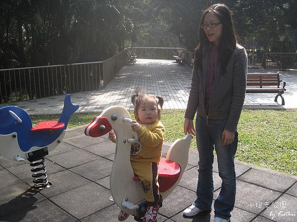 [1Y2M23D]騎天鵝