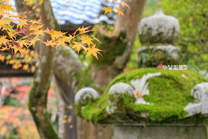 京都旅店 (2).jpeg
