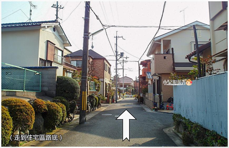 淀水路 (10).jpeg