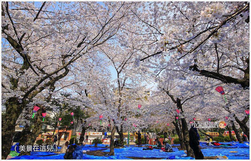 鶴舞公園 (3).jpeg