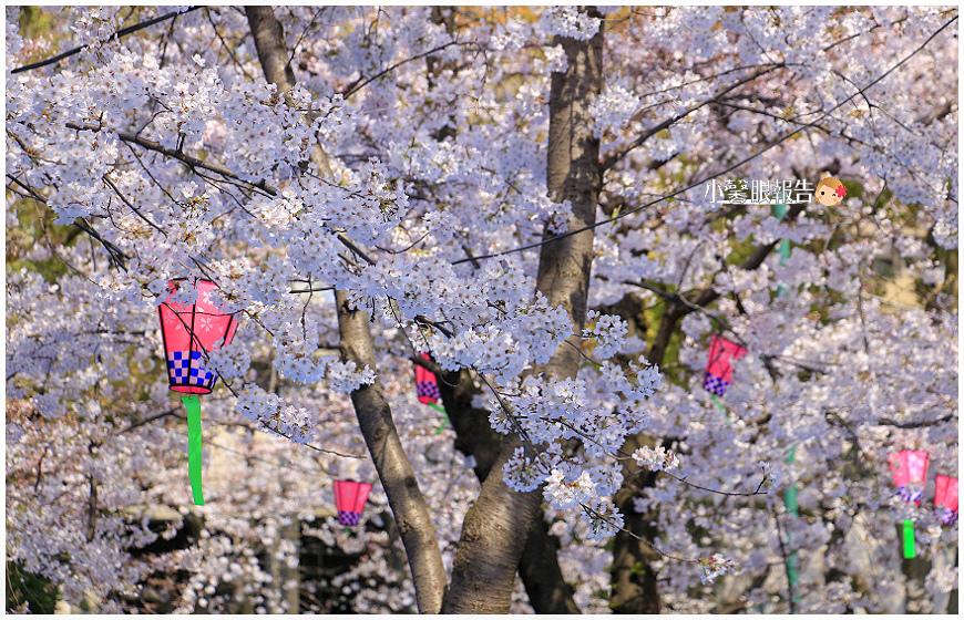 鶴舞公園 (4).jpeg