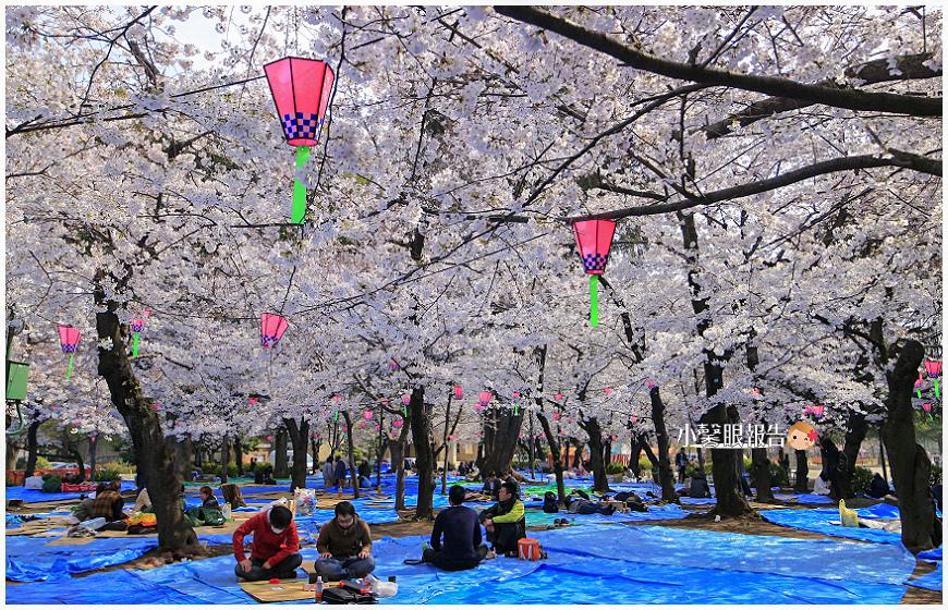 鶴舞公園 (5).jpeg