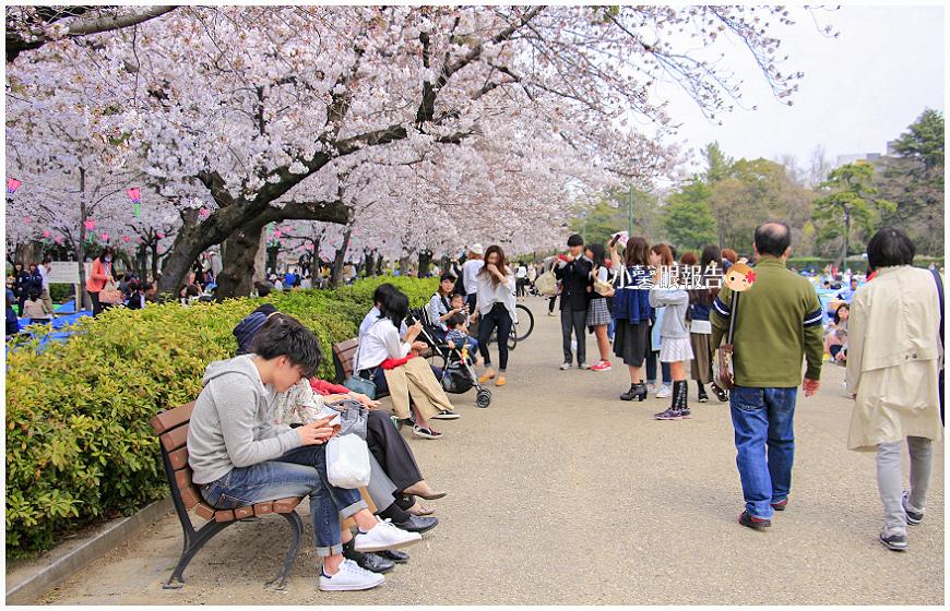 鶴舞公園 (12).jpeg