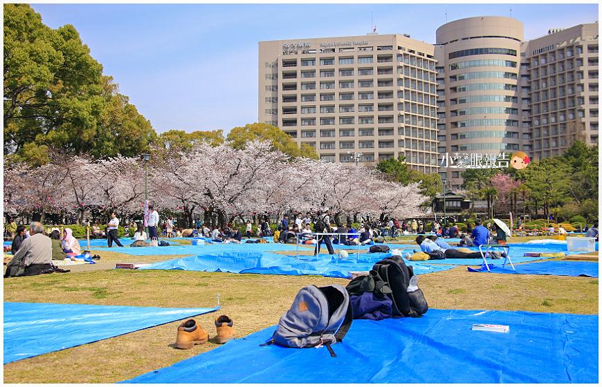 鶴舞公園 (20).jpeg