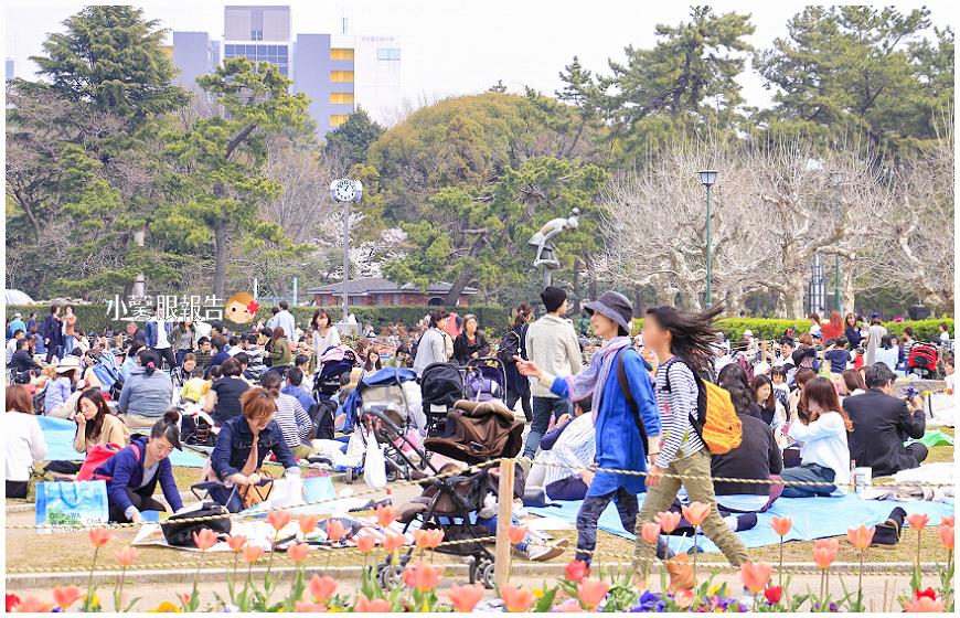 鶴舞公園 (17).jpg