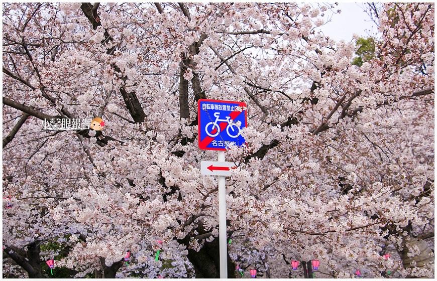 鶴舞公園 (27).jpeg
