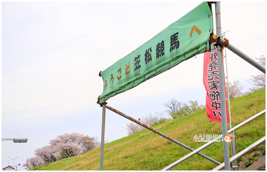 笠松 (3).jpeg