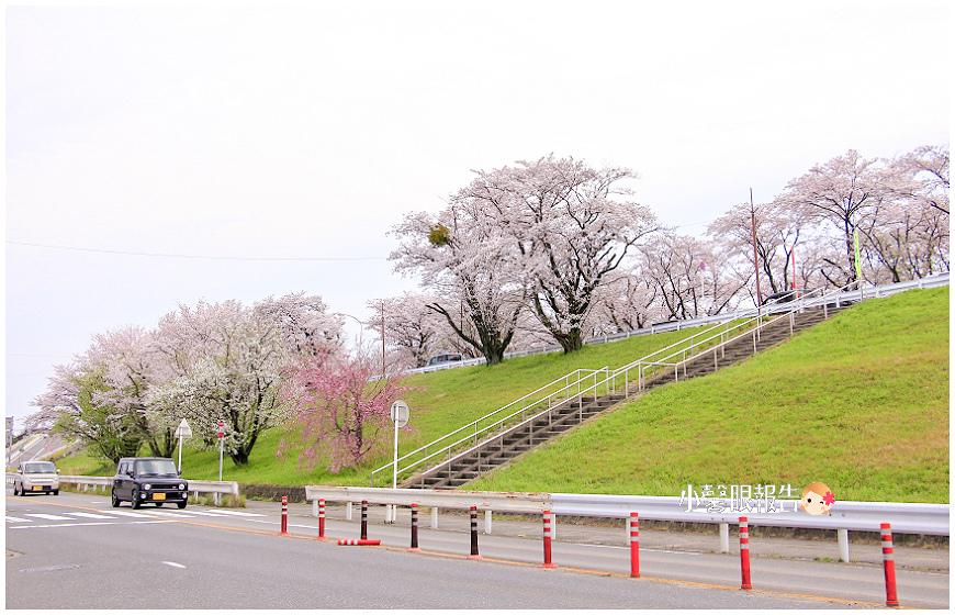 笠松 (7).jpeg