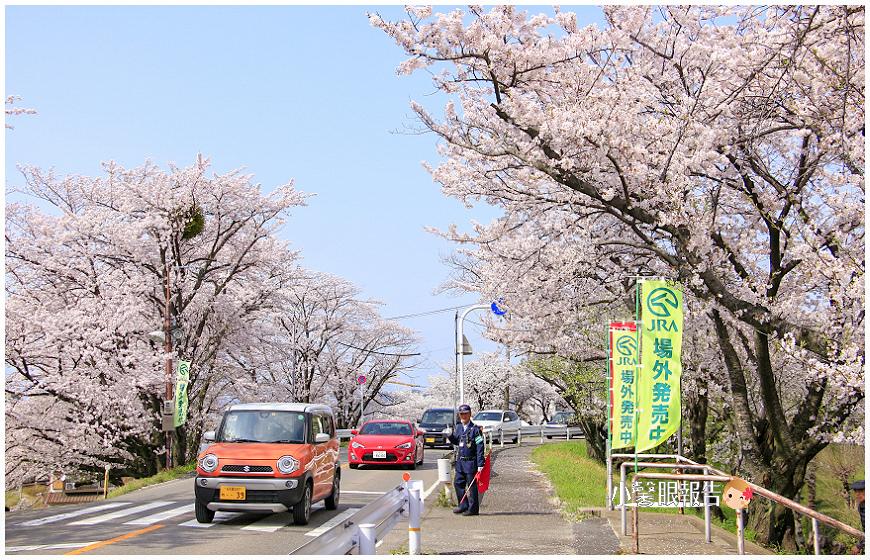 笠松 (9).jpeg