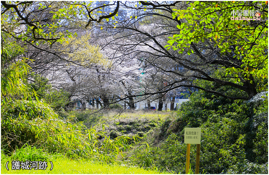 aichi-gokoku (3).jpg