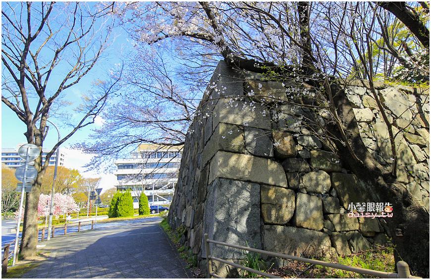 aichi-gokoku (5).jpg
